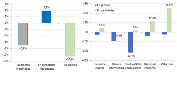 Variación interanual de las importaciones (2015 - 2016). Fuente: CAME