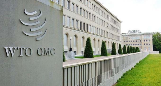 """OMC: lanzan Cumbre de los Pueblos y denuncian """"papelón internacional"""" de Macri"""